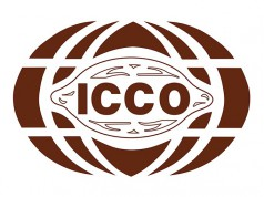 cocoa prices futures cocoa market ICCO