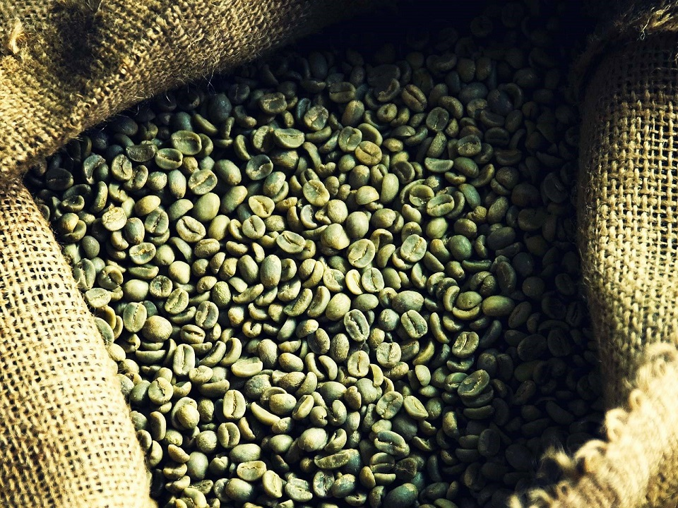 Market For Green Coffee Bean Extracts To Rise At An Attractive