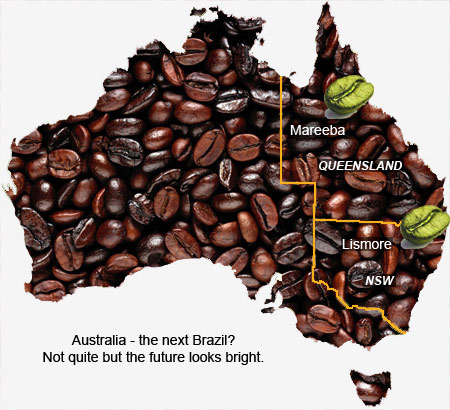 Instant Gratification The Myth Of Australias Coffee