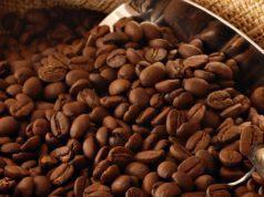 coffee conscience