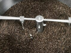 coffee bean composition