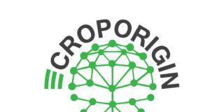 ECropOrigin