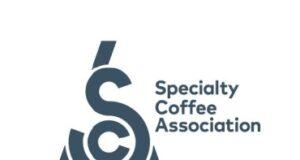 Sca Design in Coffee