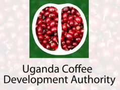 Uganda coffee Covid