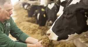 Nestlé dairy carbon neutrality