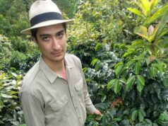 Climate coffee Colombia