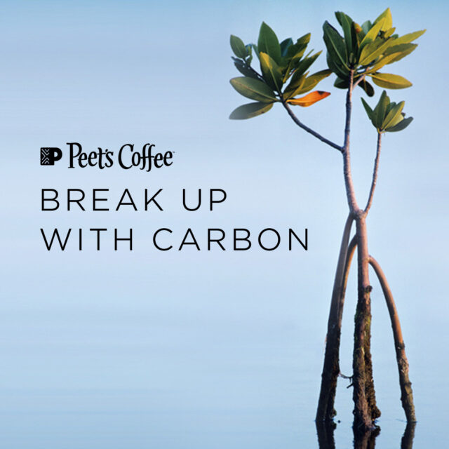 Carbon Neutral Series subscription