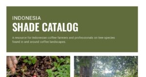 Catalog coffee Indonesia