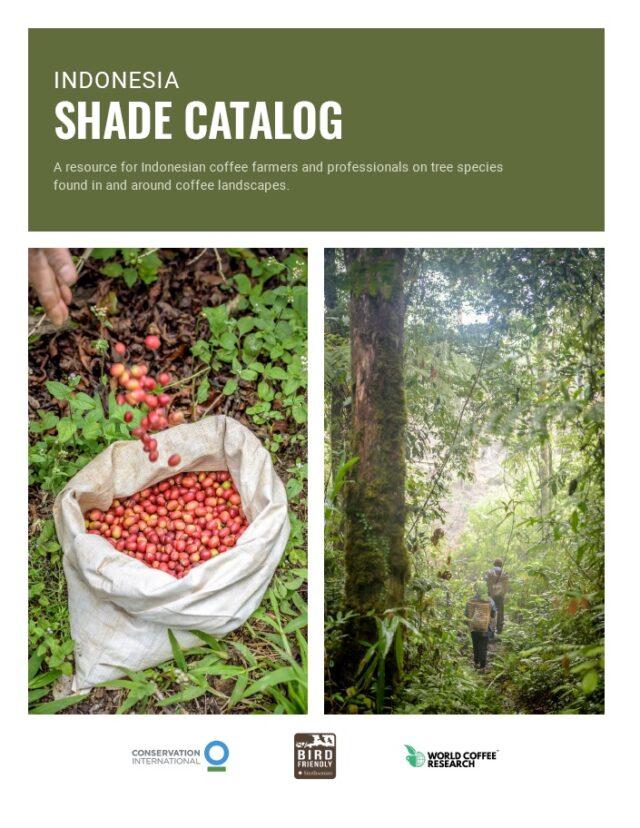 Catalog coffee Indonesia