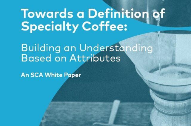 SCA White Paper